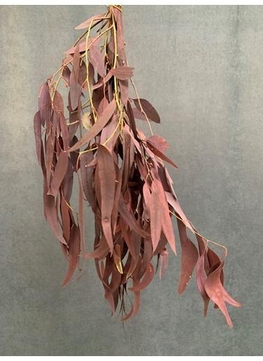 Kuru Çiçek Deposu Kuru Çiçek Şoklanmış Yaprak Okaliptus 70 Cm Kırmızı Kırmızı